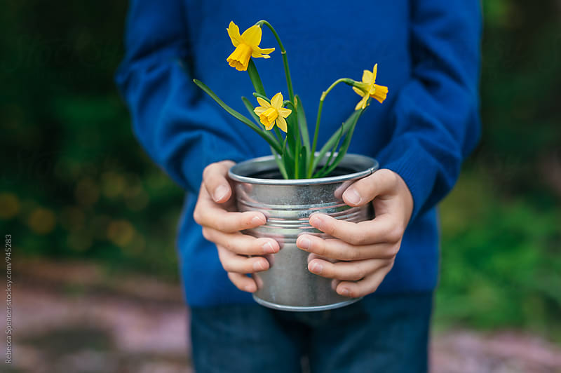 Child holding a pot of daffodil flowers by Rebecca Spencer for Stocksy United