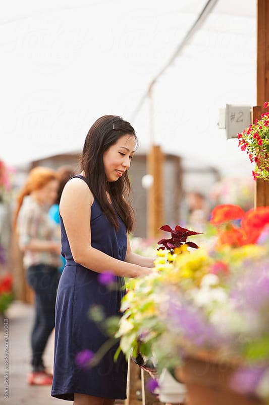 Nursery: Woman Shops for Plants by Sean Locke for Stocksy United