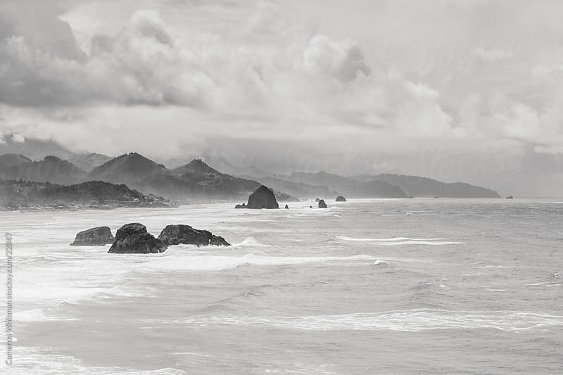 Oregon Coast by Cameron Whitman for Stocksy United