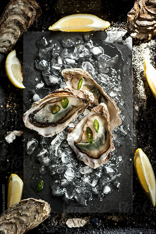 Oysters on ice. by Darren Muir for Stocksy United