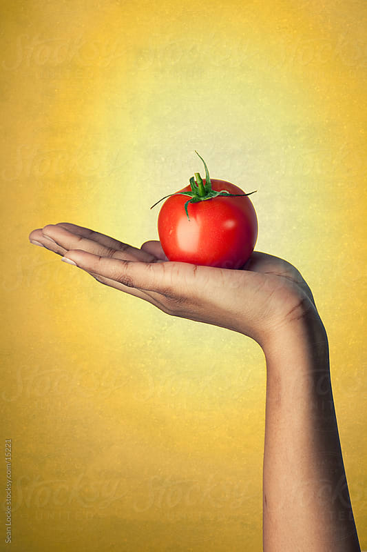 Healthy: Woman Holds Ripe Tomato in Palm by Sean Locke for Stocksy United