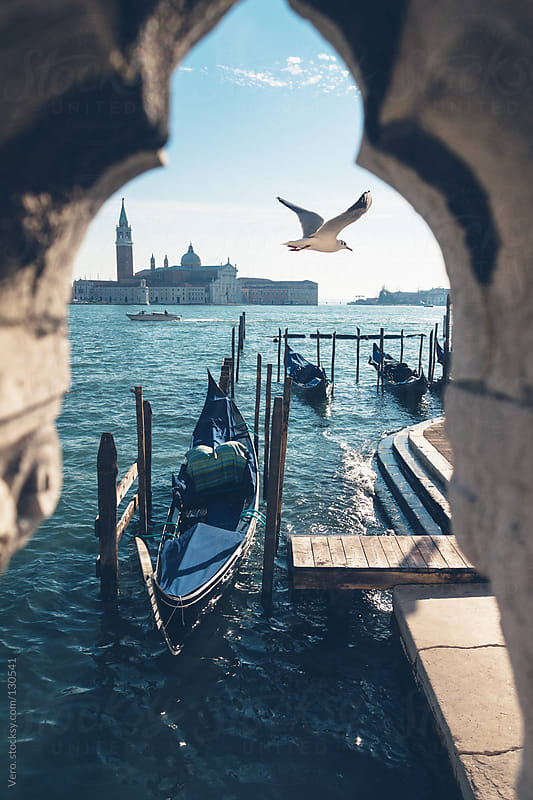 Venice, Seagull flying over the sea by Good Vibrations Images for Stocksy United