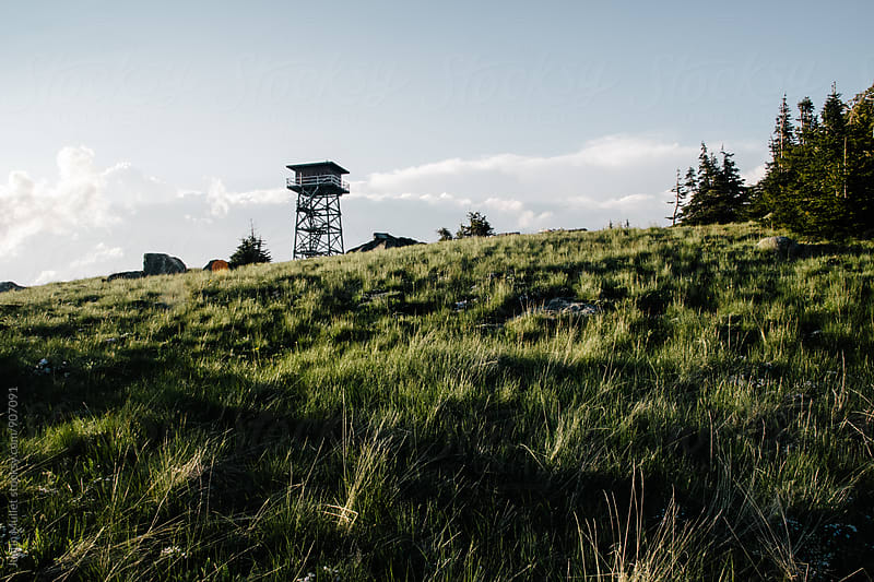 Grassy meadows in front of a fire lookout tower by Justin Mullet for Stocksy United