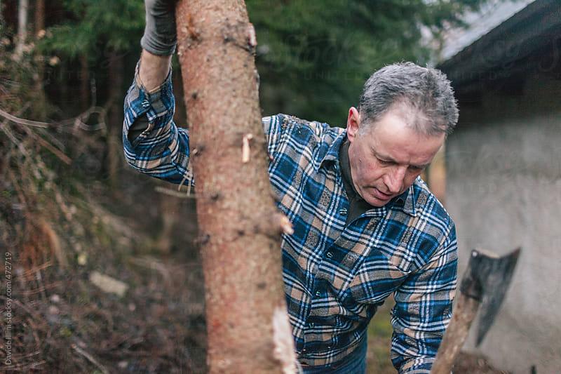Lumberjack at work by Davide Illini for Stocksy United