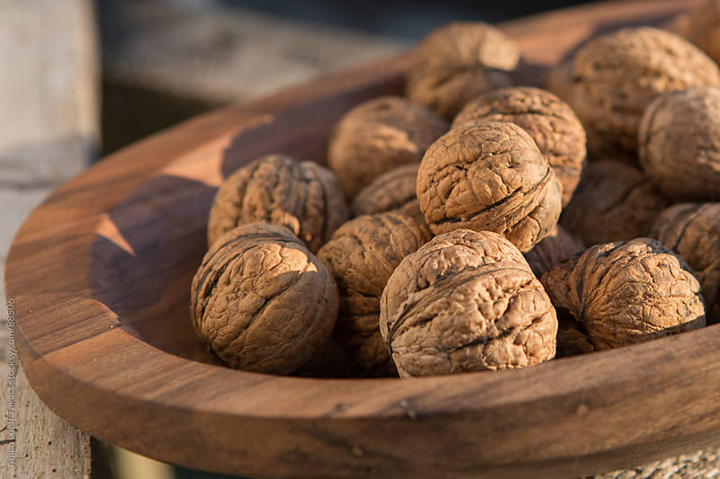 Walnuts in sunshine by Aniko Lueff Takacs for Stocksy United