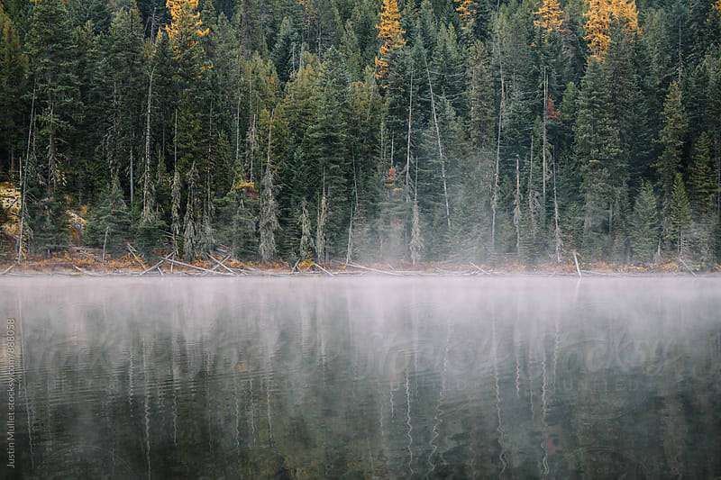 Fall colors and fog on the lake by Justin Mullet for Stocksy United