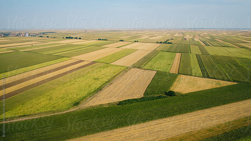 Aerial View of the Fields by Brkati Krokodil for Stocksy United