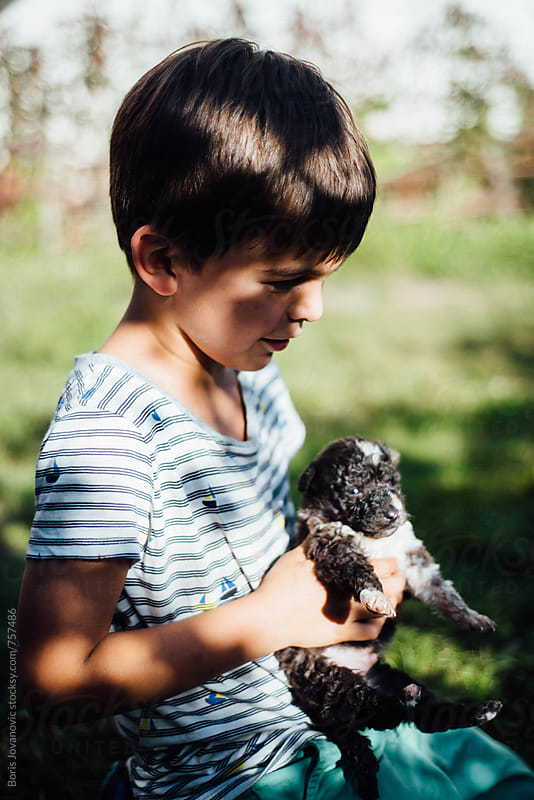 Boy sitting on the grass and holding a puppy dog by Boris Jovanovic for Stocksy United