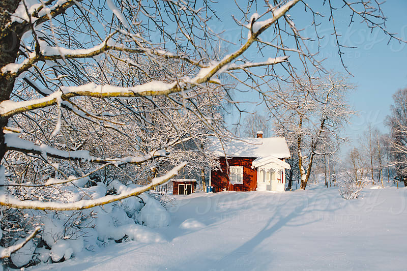 Red Swedish Cottage in Snowy Landscape by Stephen Morris for Stocksy United