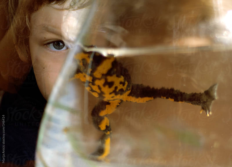 Boy age 7 playing with a frog captured in pitcher by Marija Anicic for Stocksy United