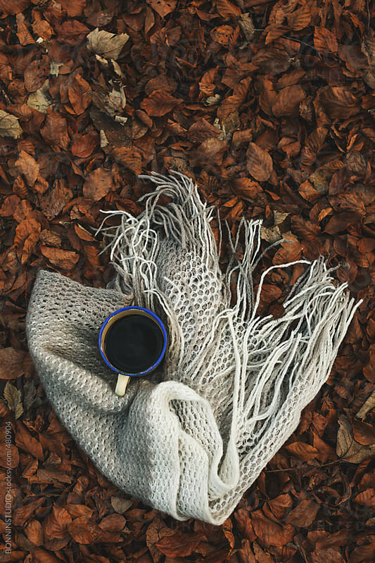 Still life of coffee and blanket on a leaves background.  by BONNINSTUDIO for Stocksy United