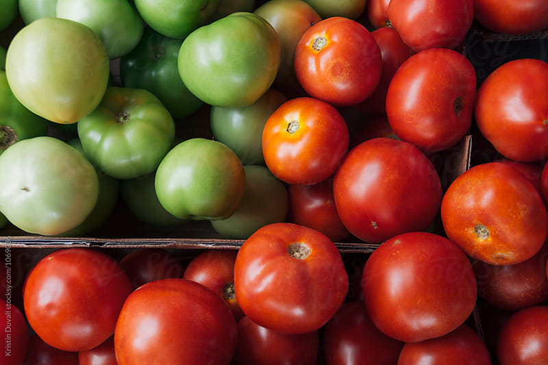 Assorted red and green tomatoes at market by Kristin Duvall for Stocksy United