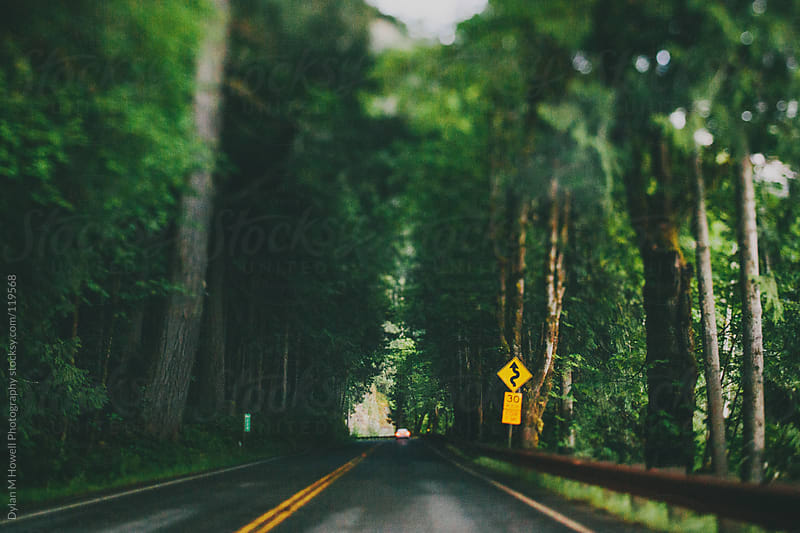 Pacific Northwest Road by Dylan M Howell Photography for Stocksy United