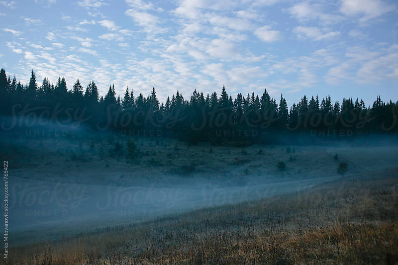 Foggy mountain landscape by Marko Milovanović for Stocksy United