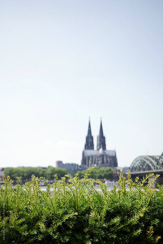 Cologne Cathedral with the river Rhein in Germany by Jasmin Awad for Stocksy United