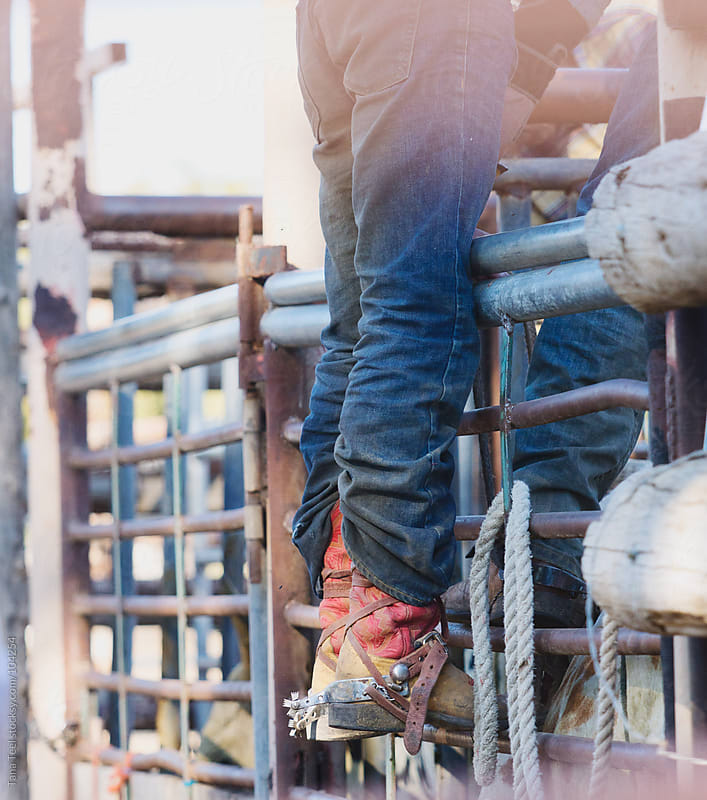 Cowboy bull rider wearing cowboy boots stands on a chute gate by Tana Teel for Stocksy United