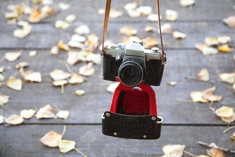 retro camera outdoors among yellow leaves by Sonja Lekovic for Stocksy United