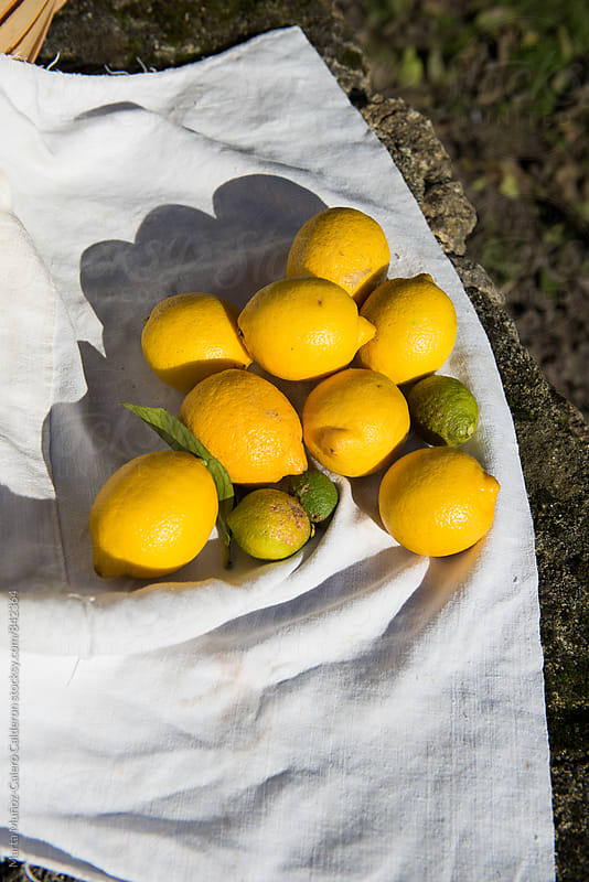 Lemons on linen cloth on a stone wall by Marta Muñoz-Calero Calderon for Stocksy United