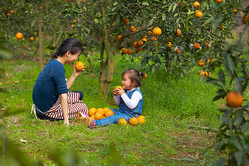 happy little asian girl with her mother in the orange farm by cuiyan Liu for Stocksy United