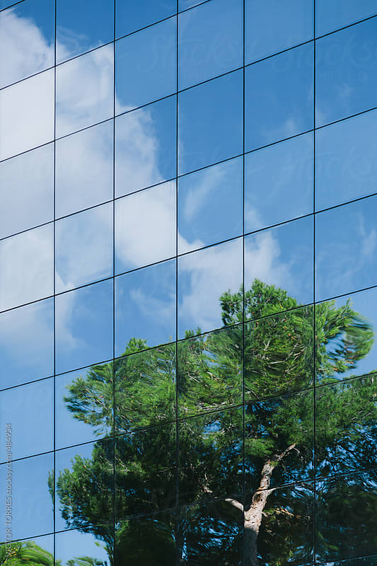 Tree Reflected on a Glass Building Facade by VICTOR TORRES for Stocksy United