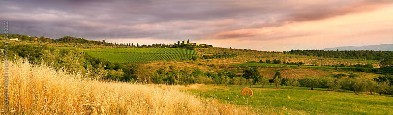panorama shot of a farm in the tuscany at sunset by Leander Nardin for Stocksy United