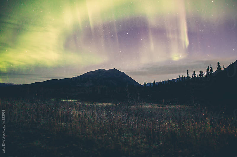 Yukon Surprise Aurora by Jake Elko for Stocksy United
