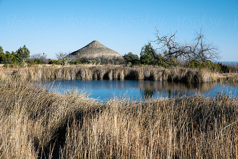 Natural spring in the Texas desert surrounded by grass. by Jeremy Pawlowski for Stocksy United