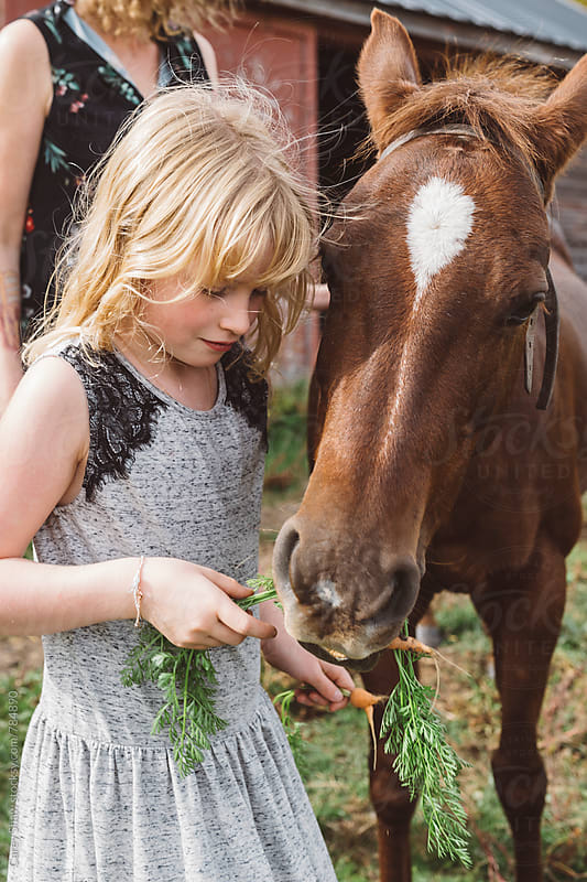 Child feeding carrots to pony by Carey Shaw for Stocksy United