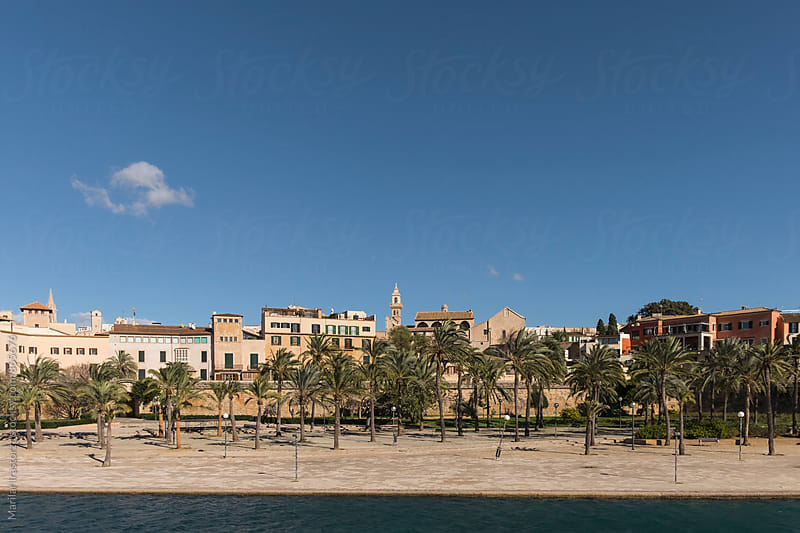 View of the old town of Palma de Mallorca by Marilar Irastorza for Stocksy United