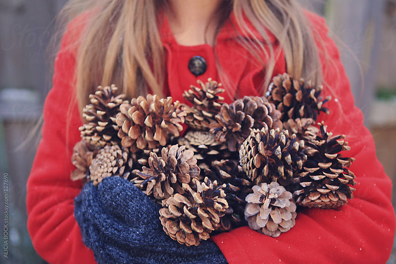 Arms Full of Pinecones by ALICIA BOCK for Stocksy United