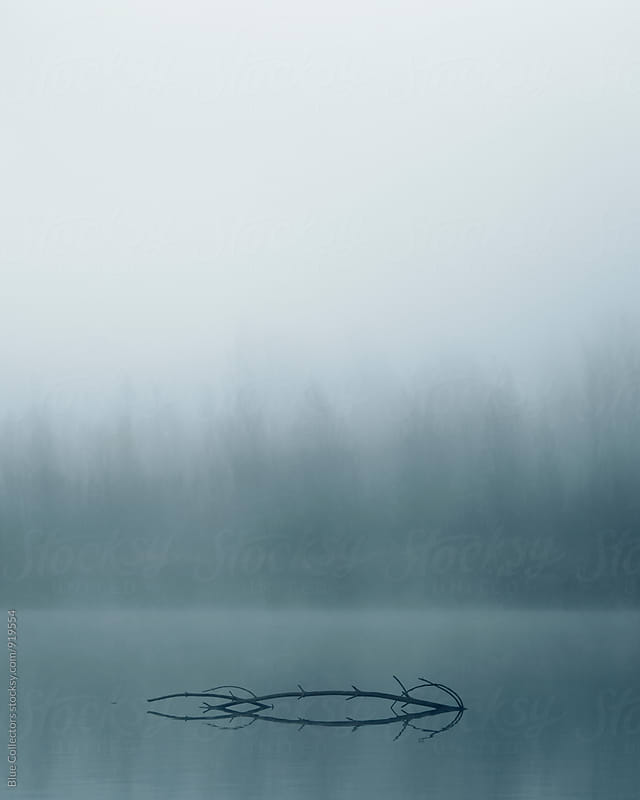 foggy morning in the lake by Jordi Rulló for Stocksy United