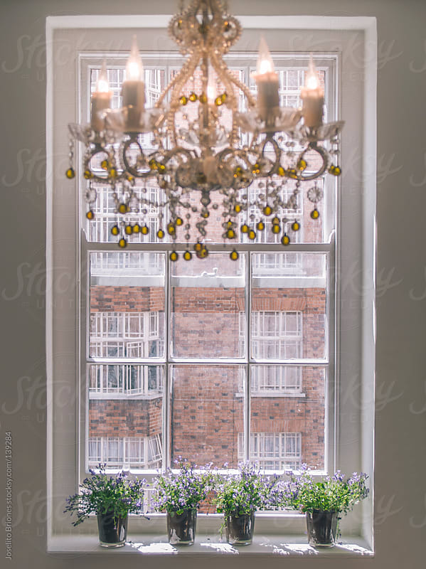 Chandelier-lit Room with Potted Flowers on the Window Sill by Joselito Briones for Stocksy United
