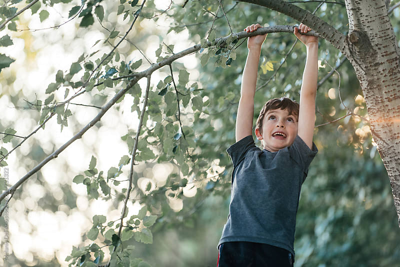 Tree climbing by Melanie DeFazio for Stocksy United