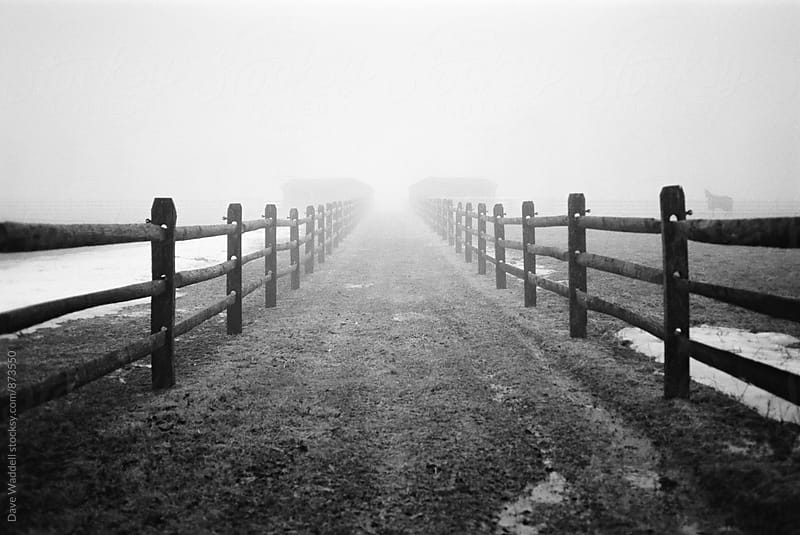 Fences in the Fog by Dave Waddell for Stocksy United