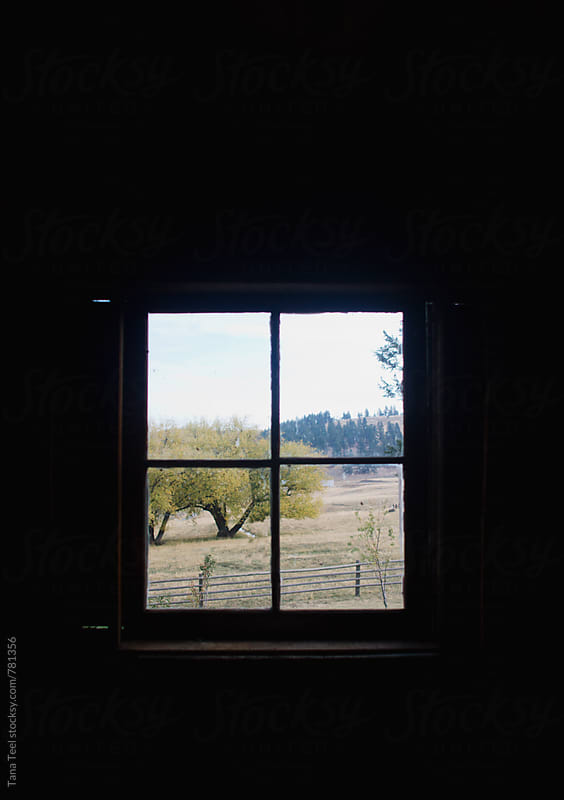 rural landscape outside an old window by Tana Teel for Stocksy United