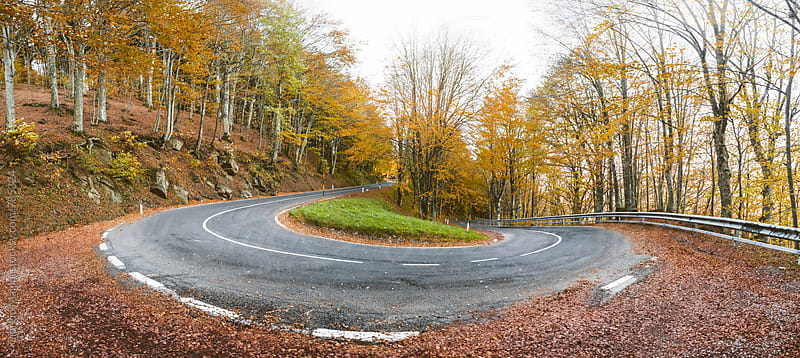 Winding Road in Autumn Colors, Italy by Giorgio Magini for Stocksy United