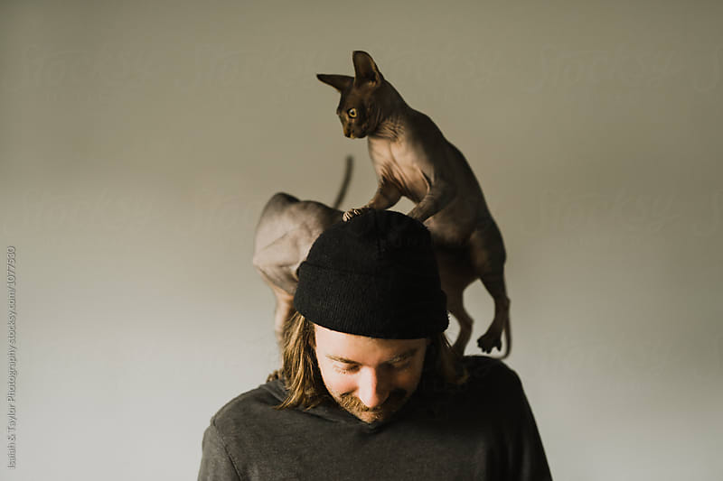 Cats on Man by Isaiah & Taylor Photography for Stocksy United