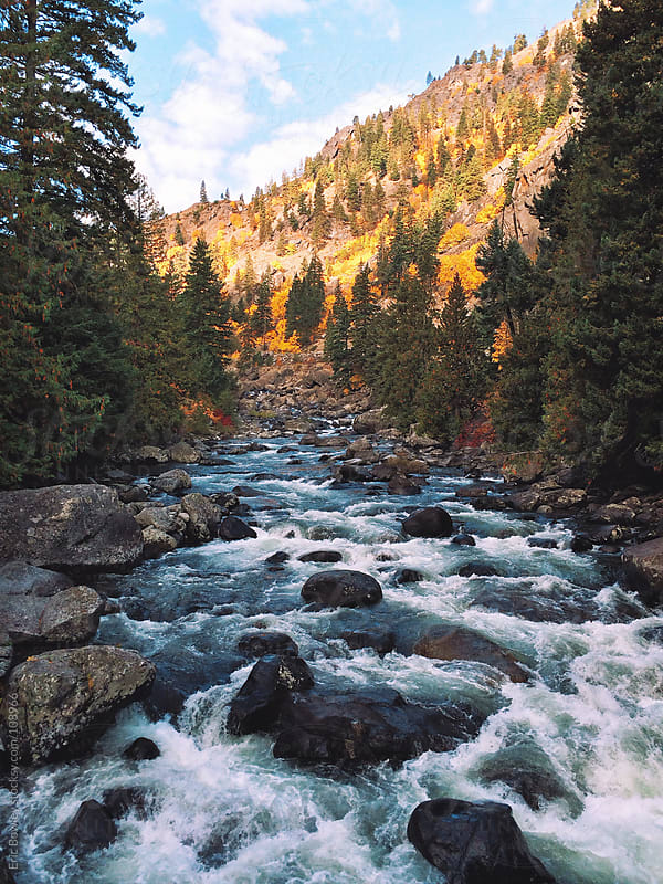 Rushing Northwest Creek by Eric Bowley for Stocksy United