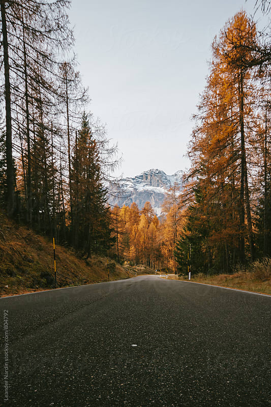 road through italian alps in autumn by Leander Nardin for Stocksy United