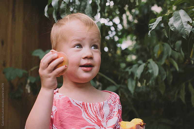 Little Girl Picking Peaches by Gabrielle Lutze for Stocksy United
