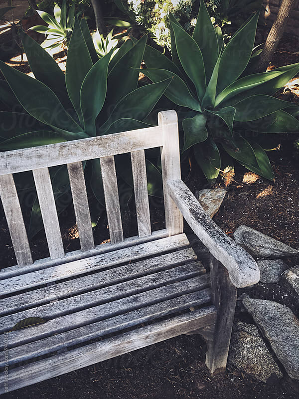 Bench surrounded by stones and plants by paff for Stocksy United