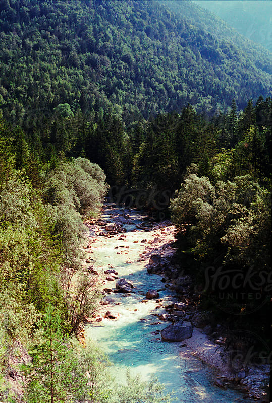 Blue river and forest by Bor Cvetko for Stocksy United