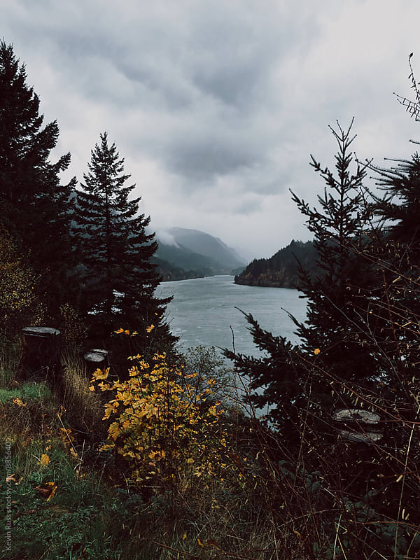 Foggy Day at the River Gorge by Kevin Russ for Stocksy United