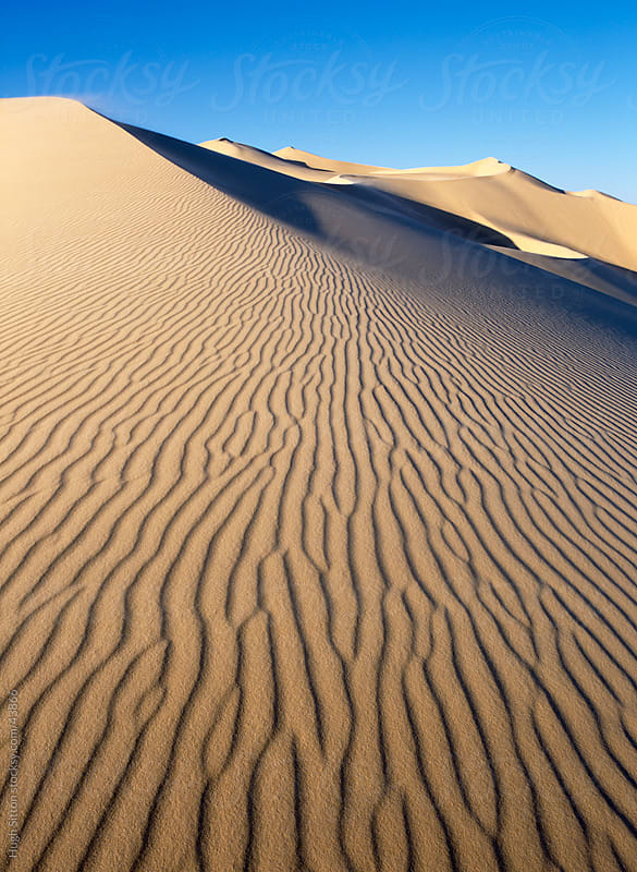 Sand dunes in the Sahara Desert. by Hugh Sitton for Stocksy United