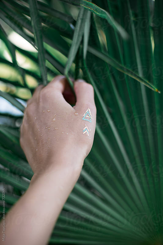 Female hand holding palm leaves by Maja Topcagic for Stocksy United