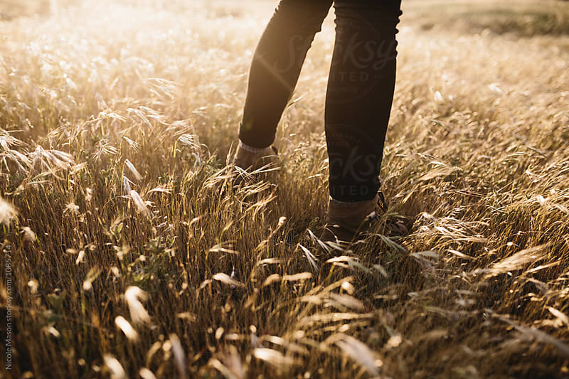 legs of person standing in golden field at sunset by Nicole Mason for Stocksy United