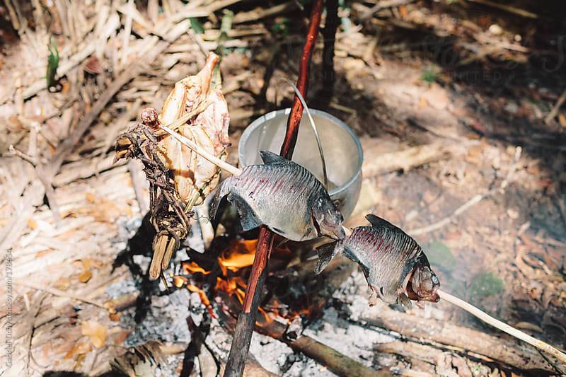 Roasting piranhas on open fire by Gabriel Tichy for Stocksy United