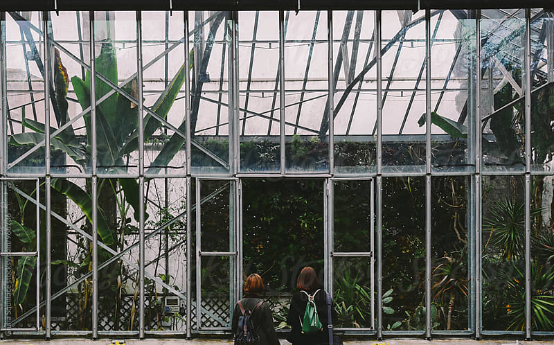 Young women looking inside a greenhouse by Giulia Squillace for Stocksy United