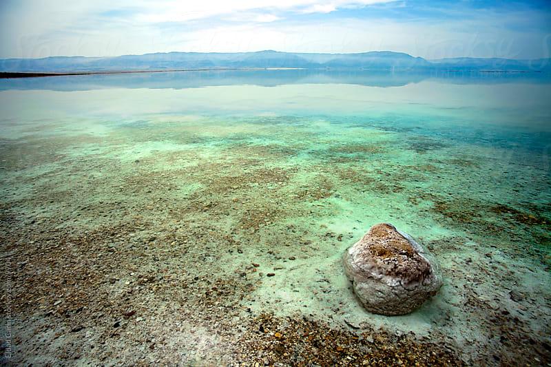 Dead Sea Rock in Shallow Waters by Eldad Carin for Stocksy United
