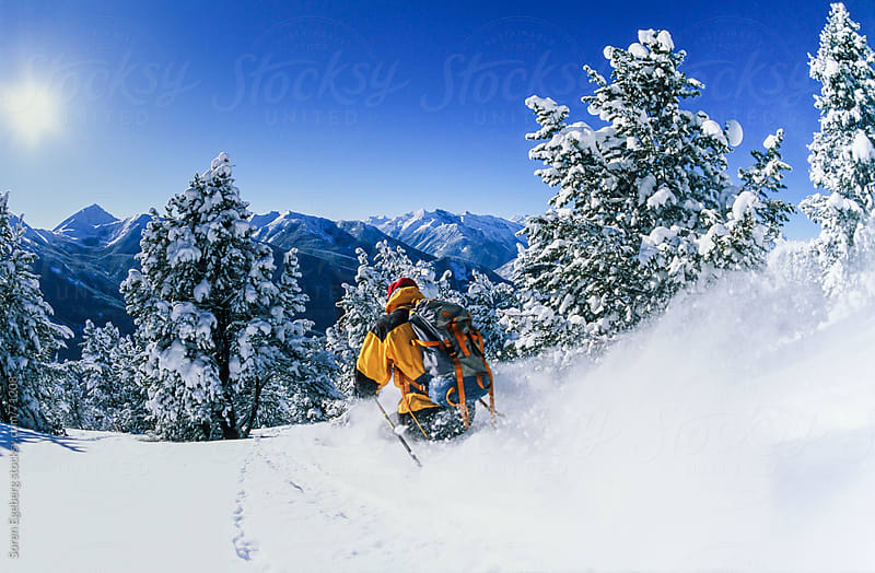 Man tree skiing powder snow in winter mountains of Red Mountain, British Columbia. by Soren Egeberg for Stocksy United